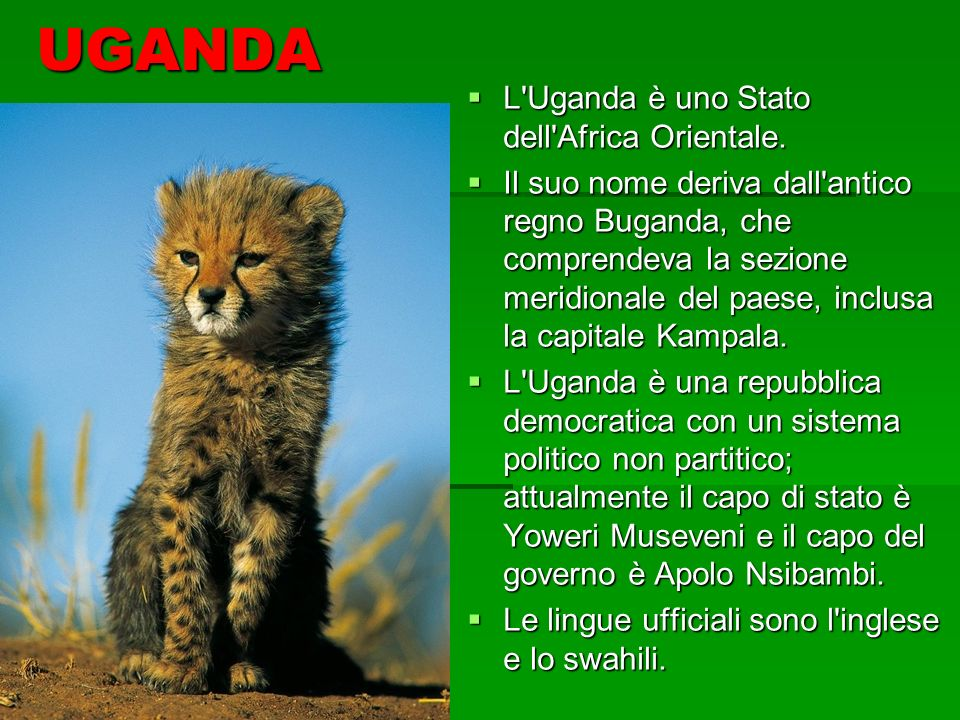 UGANDA L Uganda è uno Stato dell Africa Orientale.
