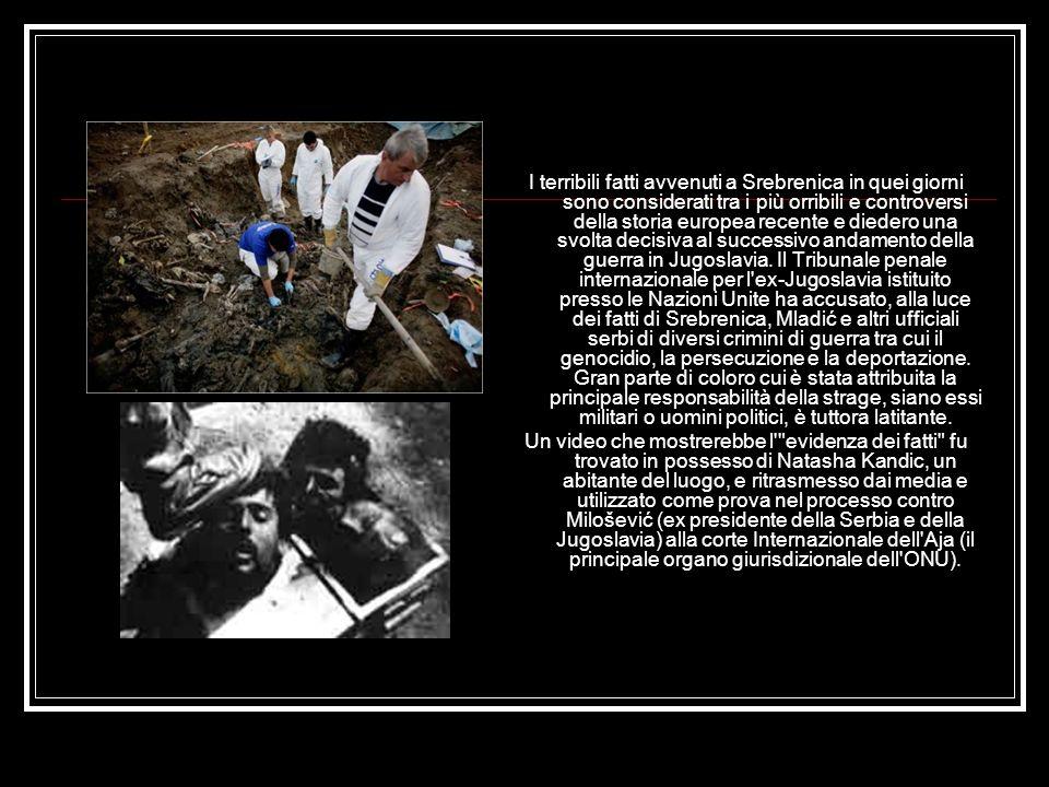 I terribili fatti avvenuti a Srebrenica in quei giorni sono considerati tra i più orribili e controversi della storia europea recente e diedero una svolta decisiva al successivo andamento della guerra in Jugoslavia.