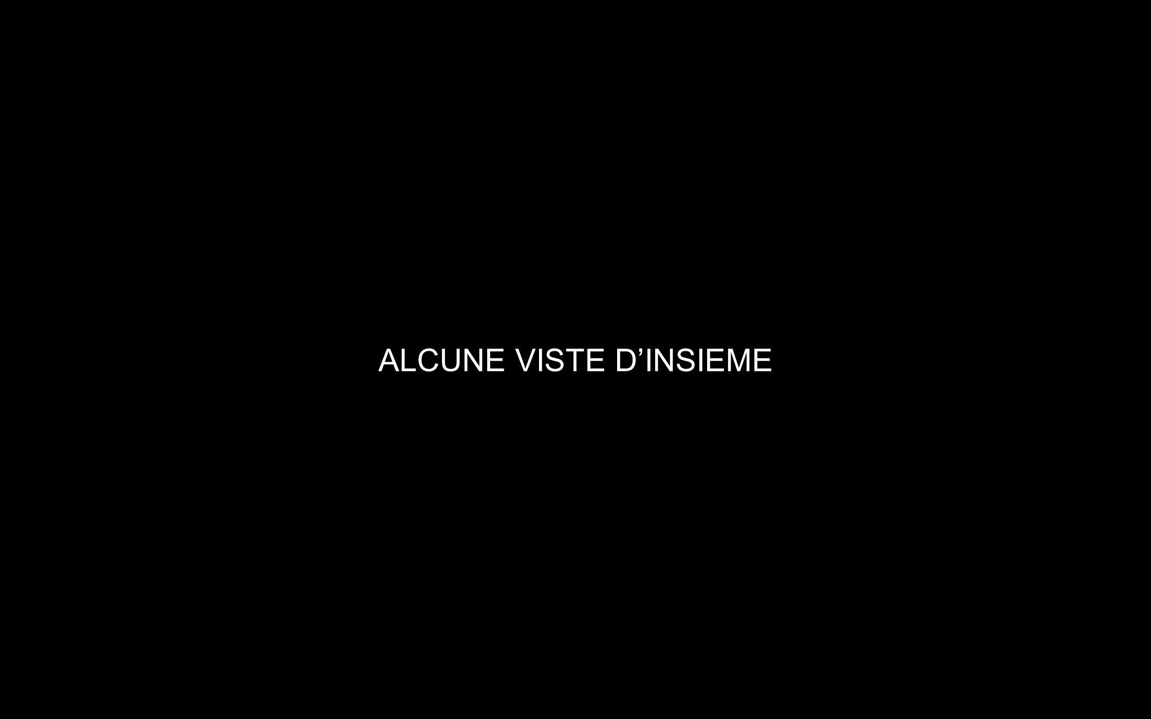 ALCUNE VISTE DINSIEME