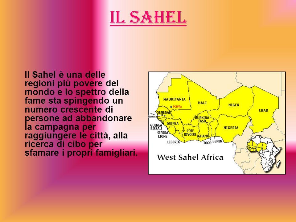 IL SAHEL Il Sahel è una delle regioni più povere del mondo e lo spettro della fame sta spingendo un numero crescente di persone ad abbandonare la campagna per raggiungere le città, alla ricerca di cibo per sfamare i propri famigliari.