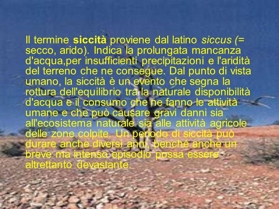 Il termine siccità proviene dal latino siccus (= secco, arido). Indica la prolungata mancanza d'acqua,per insufficienti precipitazioni e l'aridità del