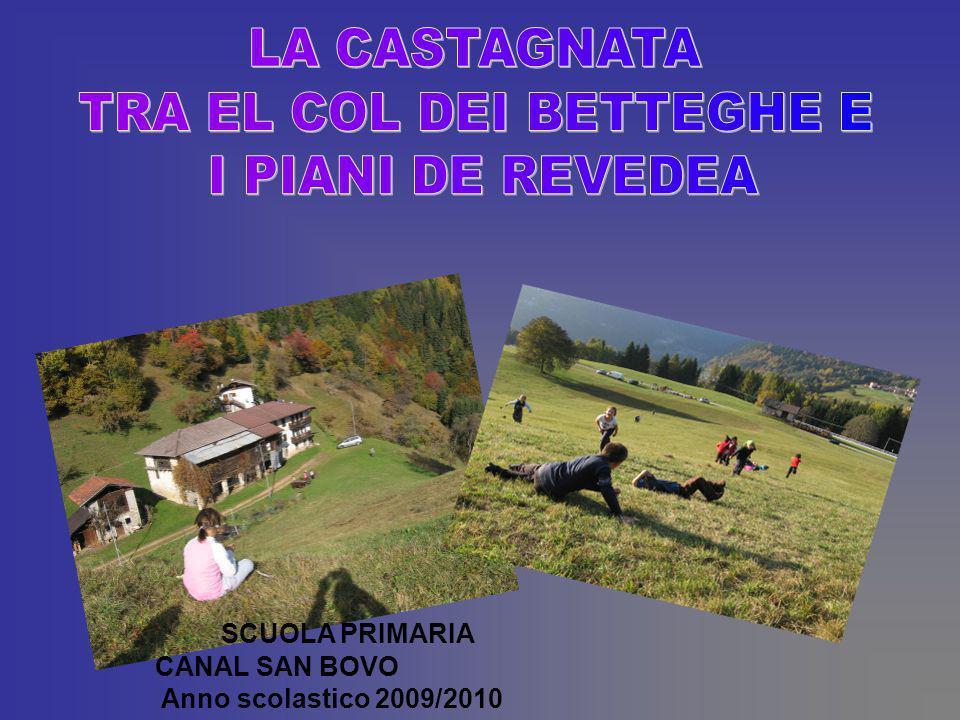 SCUOLA PRIMARIA CANAL SAN BOVO Anno scolastico 2009/2010