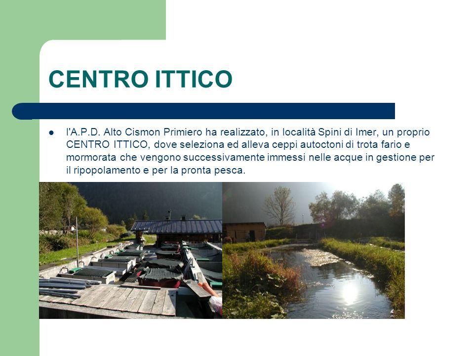 CENTRO ITTICO l'A.P.D. Alto Cismon Primiero ha realizzato, in località Spini di Imer, un proprio CENTRO ITTICO, dove seleziona ed alleva ceppi autocto