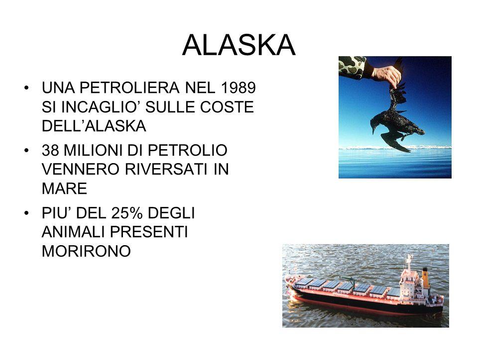 ALASKA UNA PETROLIERA NEL 1989 SI INCAGLIO SULLE COSTE DELLALASKA 38 MILIONI DI PETROLIO VENNERO RIVERSATI IN MARE PIU DEL 25% DEGLI ANIMALI PRESENTI