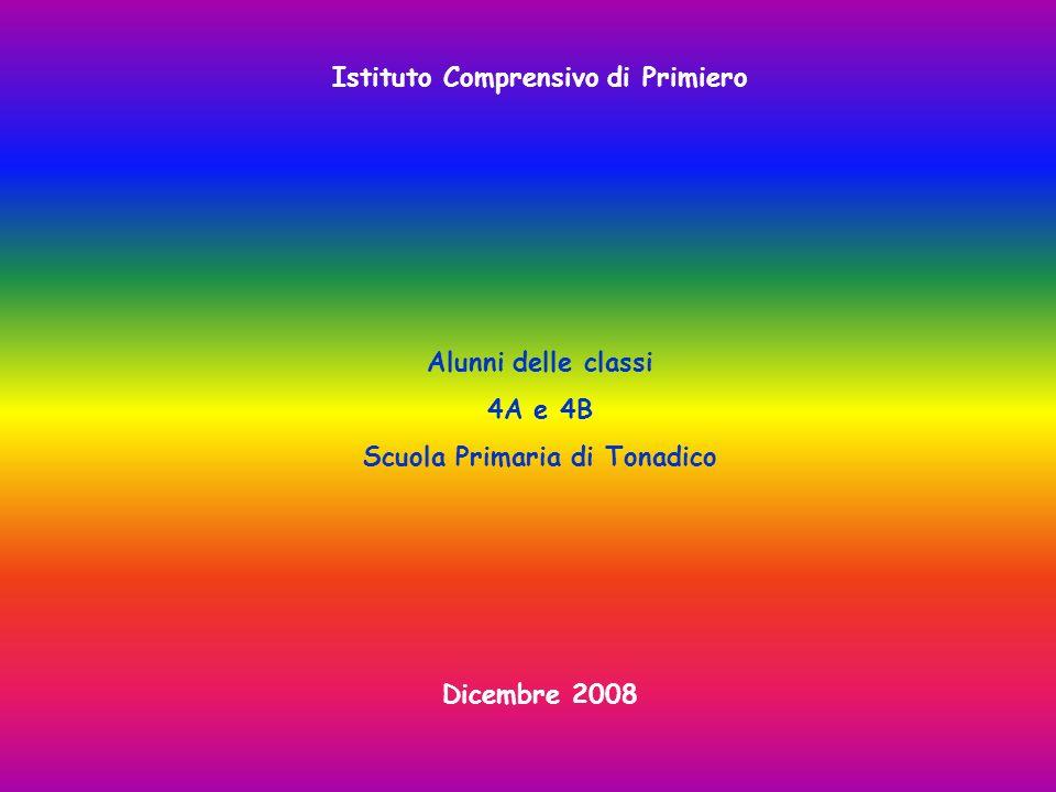 Istituto Comprensivo di Primiero Alunni delle classi 4A e 4B Scuola Primaria di Tonadico Dicembre 2008