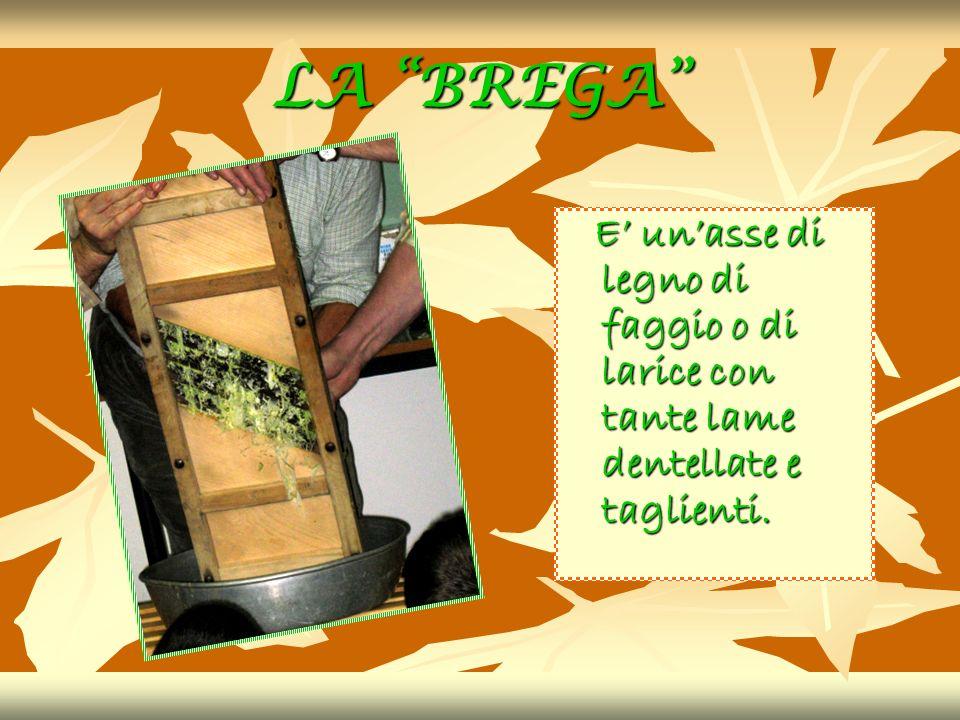 LA BREGA E unasse di legno di faggio o di larice con tante lame dentellate e taglienti.