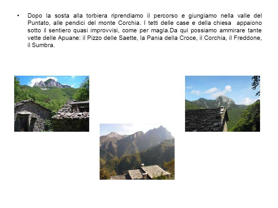 Dopo la sosta alla torbiera riprendiamo il percorso e giungiamo nella valle del Puntato, alle pendici del monte Corchia. I tetti delle case e della ch