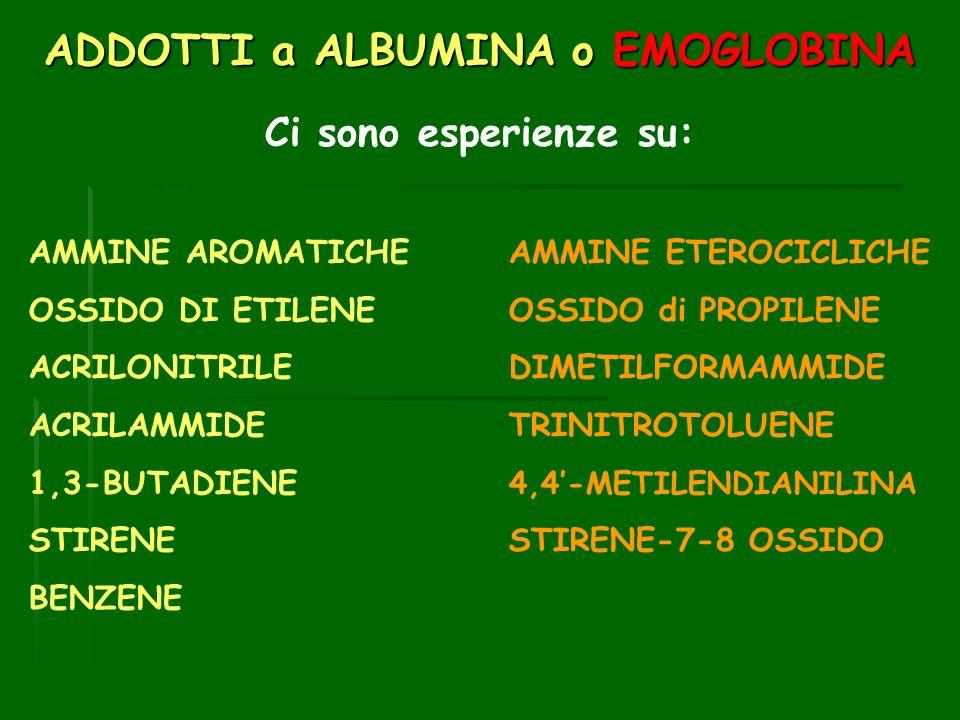 ADDOTTI a ALBUMINA o EMOGLOBINA Ci sono esperienze su: AMMINE AROMATICHEAMMINE ETEROCICLICHE OSSIDO DI ETILENE OSSIDO di PROPILENE ACRILONITRILEDIMETILFORMAMMIDE ACRILAMMIDETRINITROTOLUENE 1,3-BUTADIENE 4,4-METILENDIANILINA STIRENESTIRENE-7-8 OSSIDO BENZENE