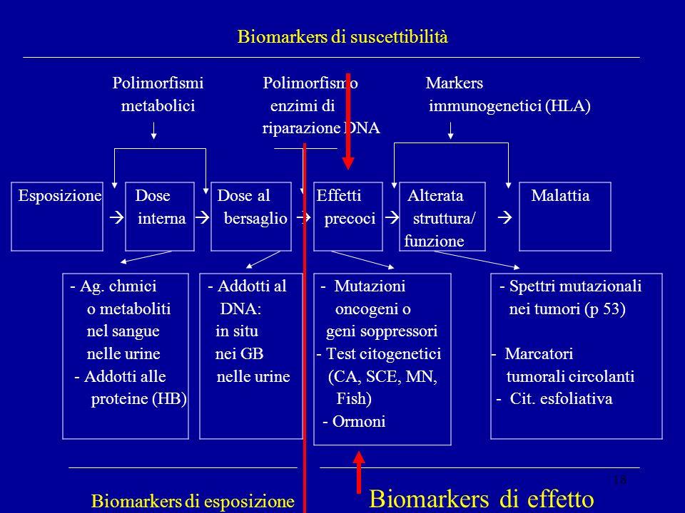 18 Biomarkers di suscettibilità Polimorfismi Polimorfismo Markers metabolici enzimi di immunogenetici (HLA) riparazione DNA Esposizione Dose Dose al E