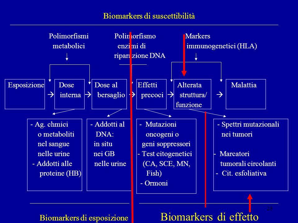28 Biomarkers di suscettibilità Polimorfismi Polimorfismo Markers metabolici enzimi di immunogenetici (HLA) riparazione DNA Esposizione Dose Dose al E