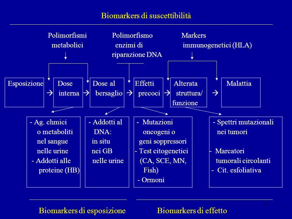 5 Biomarkers di suscettibilità Polimorfismi Polimorfismo Markers metabolici enzimi di immunogenetici (HLA) riparazione DNA Esposizione Dose Dose al Ef