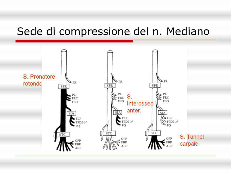 Sede di compressione del n. Mediano S. Pronatore rotondo S. Interosseo anter. S. Tunnel carpale