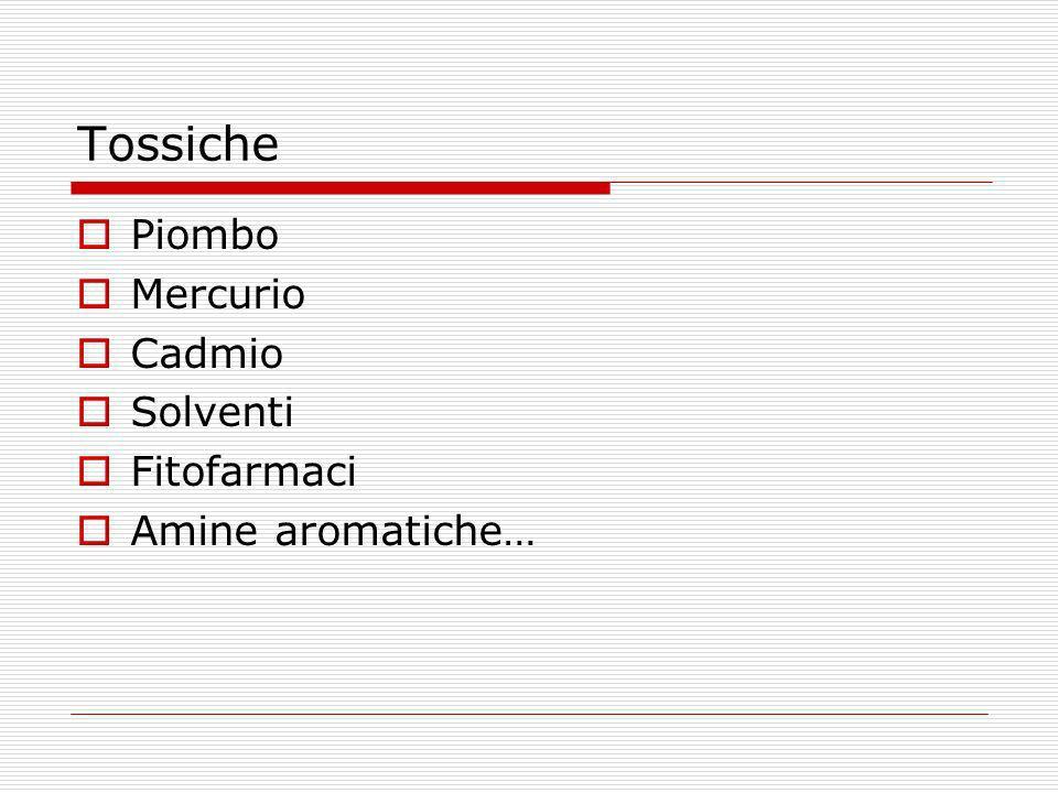 Tossiche Piombo Mercurio Cadmio Solventi Fitofarmaci Amine aromatiche…