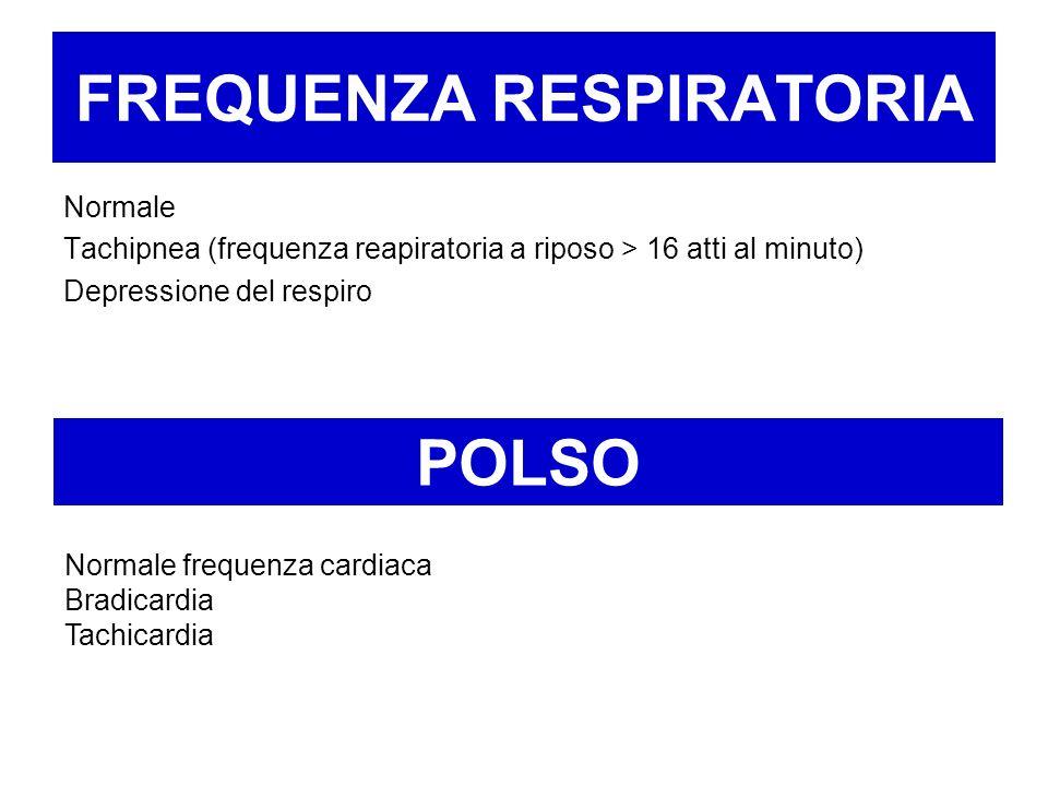 FREQUENZA RESPIRATORIA Normale Tachipnea (frequenza reapiratoria a riposo > 16 atti al minuto) Depressione del respiro POLSO Normale frequenza cardiac
