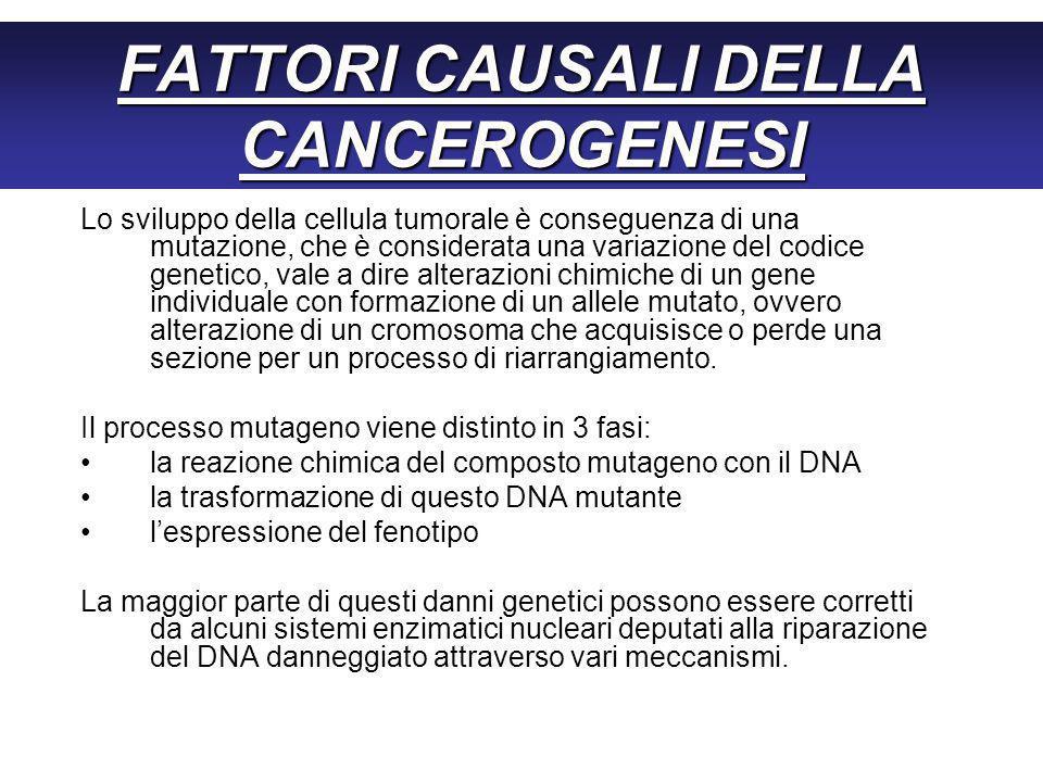FATTORI CAUSALI DELLA CANCEROGENESI Lo sviluppo della cellula tumorale è conseguenza di una mutazione, che è considerata una variazione del codice genetico, vale a dire alterazioni chimiche di un gene individuale con formazione di un allele mutato, ovvero alterazione di un cromosoma che acquisisce o perde una sezione per un processo di riarrangiamento.