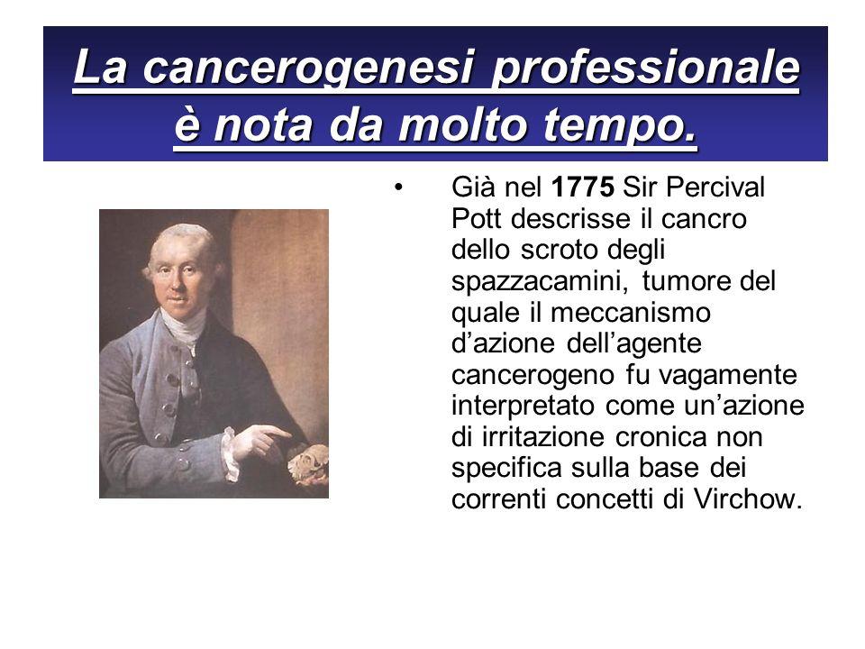 Già nel 1775 Sir Percival Pott descrisse il cancro dello scroto degli spazzacamini, tumore del quale il meccanismo dazione dellagente cancerogeno fu v