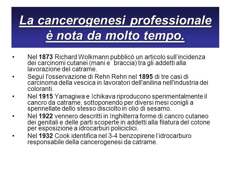 La cancerogenesi professionale è nota da molto tempo. Nel 1873 Richard Wolkmann pubblicò un articolo sullincidenza dei carcinomi cutanei (mani e bracc