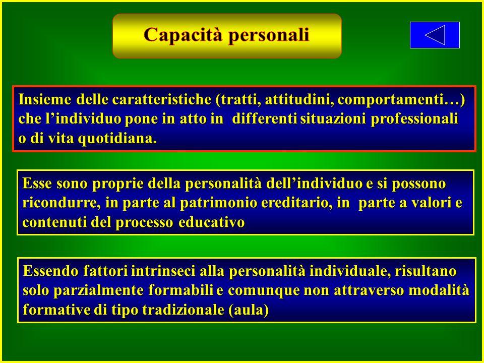 Insieme delle caratteristiche (tratti, attitudini, comportamenti…) che lindividuo pone in atto in differenti situazioni professionali o di vita quotidiana.