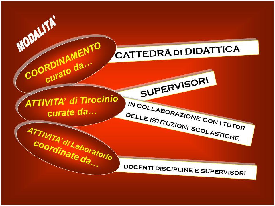 CATTEDRA di DIDATTICA COORDINAMENTO curato da… SUPERVISORI IN COLLABORAZIONE CON I TUTOR DELLE ISTITUZIONI SCOLASTICHE ATTIVITA di Tirocinio curate da… docenti discipline e supervisori ATTIVITA di Laboratorio coordinate da…