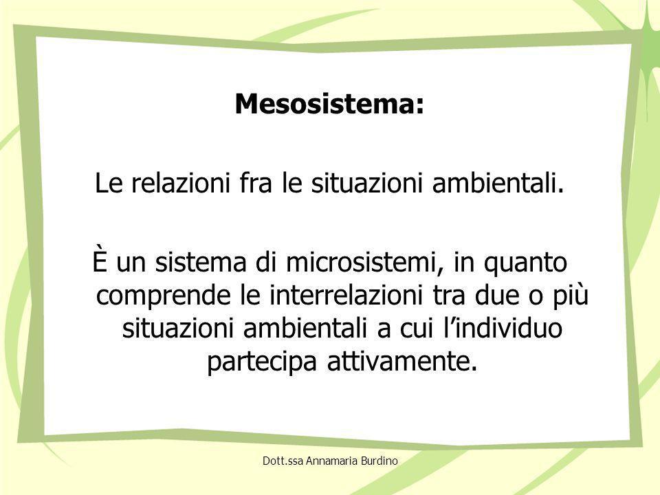 Mesosistema: Le relazioni fra le situazioni ambientali.