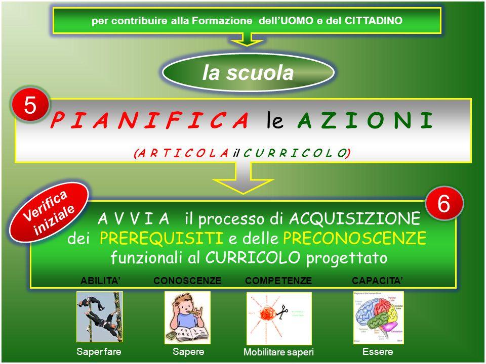 per contribuire alla Formazione dellUOMO e del CITTADINO la scuola A V V I A il processo di ACQUISIZIONE dei PREREQUISITI e delle PRECONOSCENZE funzionali al CURRICOLO progettato P I A N I F I C A le A Z I O N I (A R T I C O L A il C U R R I C O L O) Saper fareSapere Mobilitare saperi Essere ABILITA CONOSCENZECOMPETENZECAPACITA Verifica iniziale 5 6