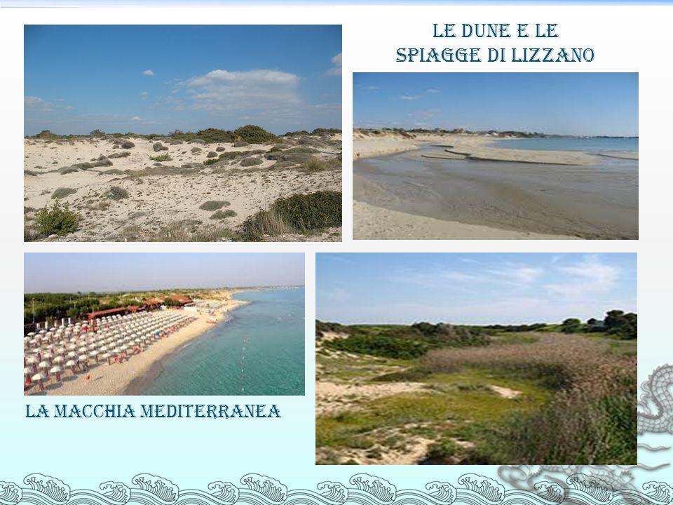 Le dune e le spiagge di Lizzano La macchia mediterranea