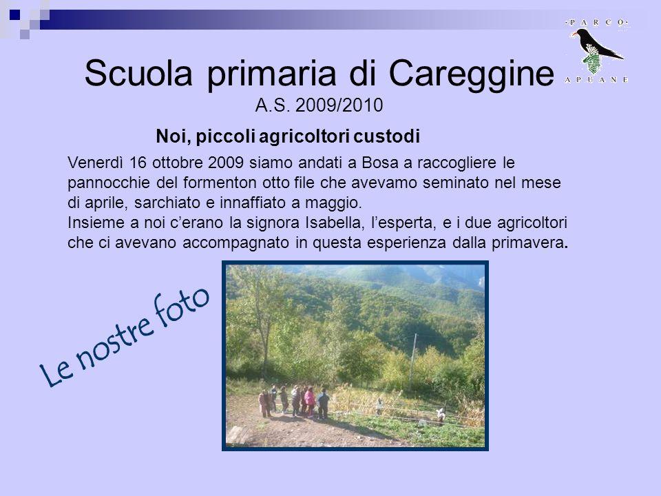 Scuola primaria di Careggine A.S. 2009/2010 Venerdì 16 ottobre 2009 siamo andati a Bosa a raccogliere le pannocchie del formenton otto file che avevam
