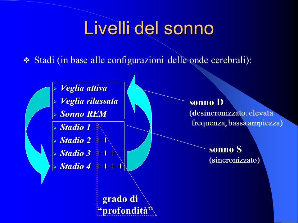 Livelli del sonno Stadi (in base alle configurazioni delle onde cerebrali): Veglia attiva Veglia attiva Veglia rilassata Veglia rilassata Sonno REM Sonno REM Stadio 1 + Stadio 1 + Stadio 2 + + Stadio 2 + + Stadio 3 + + + Stadio 3 + + + Stadio 4 + + + + Stadio 4 + + + + sonno S s (sincronizzato) sonno D d (desincronizzato: elevata frequenza, bassa ampiezza) grado di grado diprofondità