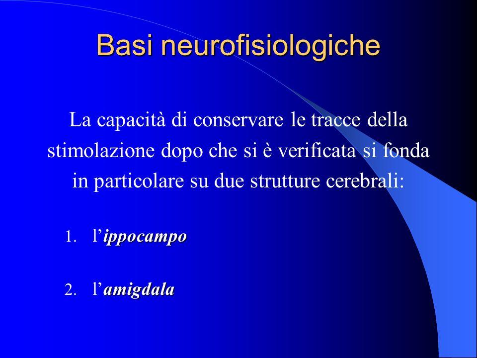 Basi neurofisiologiche La capacità di conservare le tracce della stimolazione dopo che si è verificata si fonda in particolare su due strutture cerebrali: ippocampo 1.