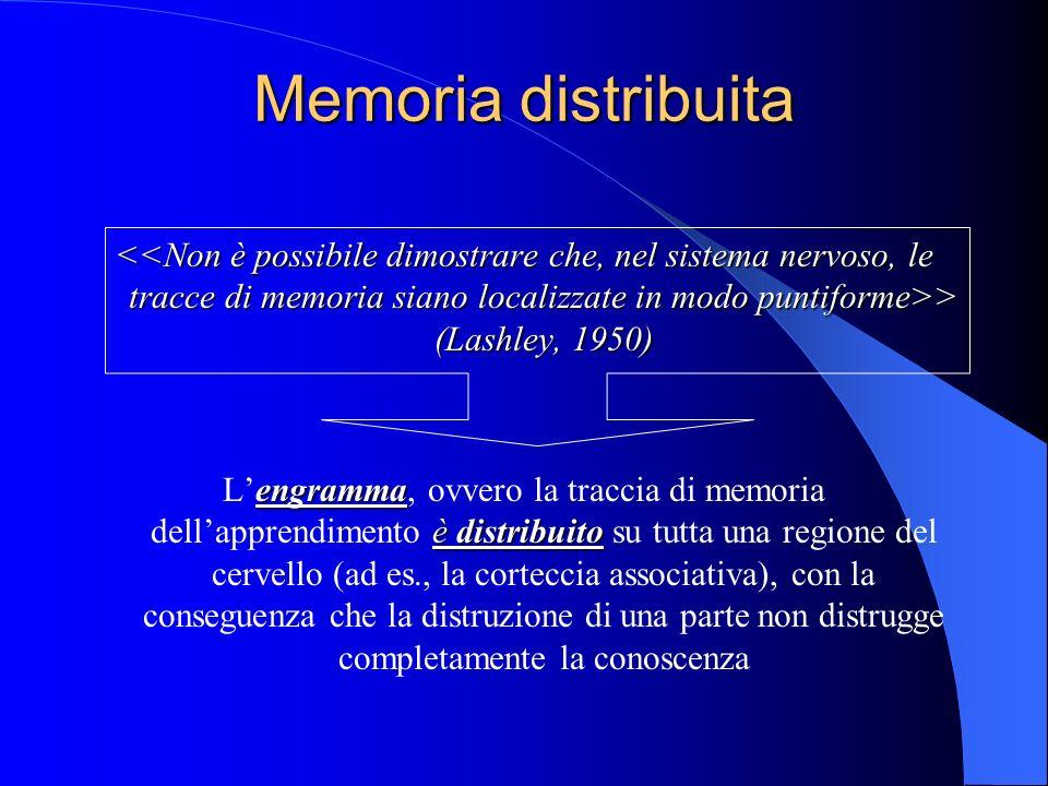 Memoria distribuita > (Lashley, 1950) > (Lashley, 1950) engramma è distribuito Lengramma, ovvero la traccia di memoria dellapprendimento è distribuito su tutta una regione del cervello (ad es., la corteccia associativa), con la conseguenza che la distruzione di una parte non distrugge completamente la conoscenza