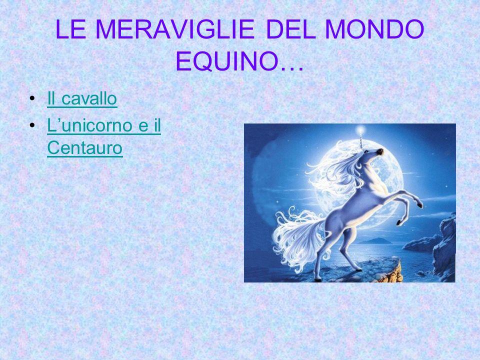 LE MERAVIGLIE DEL MONDO EQUINO… Il cavallo Lunicorno e il CentauroLunicorno e il Centauro
