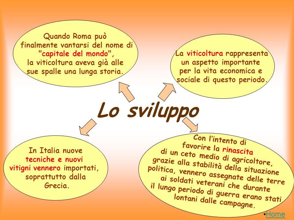 Lutilizzo nella letteratura Ovidio e Tibullo Ovidio e Tibullo considerano il vino non solo un potente afrodisiaco, ma anche ottimo ispiratore per la poesia amorosa, consolatore delle pene d amore.