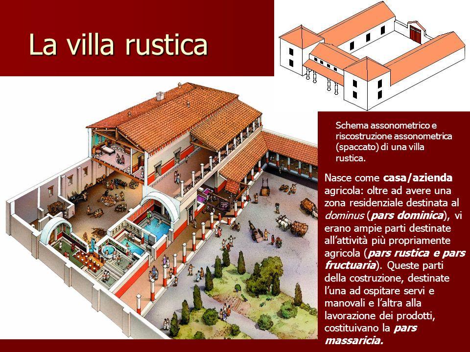 La villa rustica Schema assonometrico e riscostruzione assonometrica (spaccato) di una villa rustica. Nasce come casa/azienda agricola: oltre ad avere