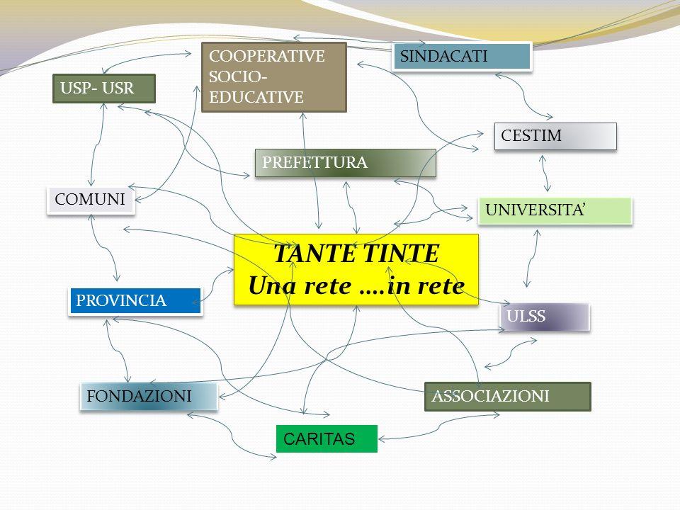 TANTE TINTE Una rete ….in rete TANTE TINTE Una rete ….in rete USP- USR PROVINCIA CESTIM COMUNI UNIVERSITA CARITAS ULSS COOPERATIVE SOCIO- EDUCATIVE FONDAZIONI ASSOCIAZIONI SINDACATI PREFETTURA