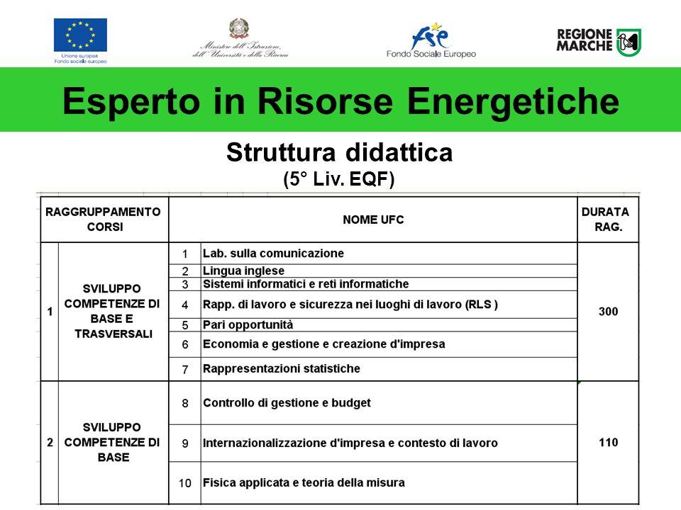 Esperto in Risorse Energetiche Struttura didattica (5° Liv. EQF)