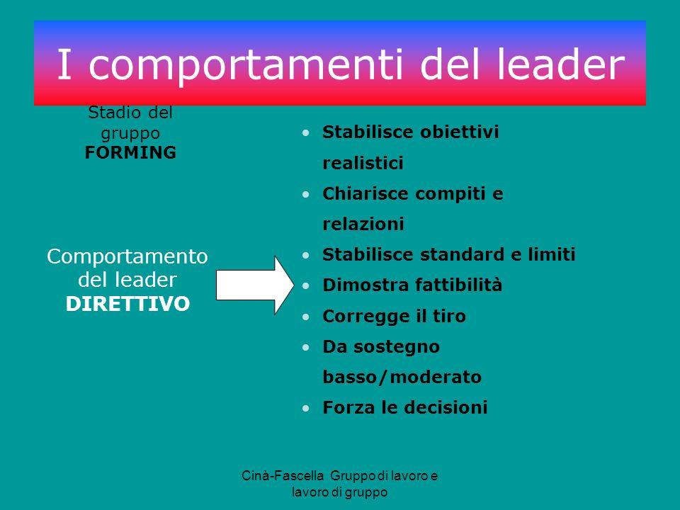 Cinà-Fascella Gruppo di lavoro e lavoro di gruppo Comportamento del leader DIRETTIVO Stadio del gruppo FORMING Stabilisce obiettivi realistici Chiaris