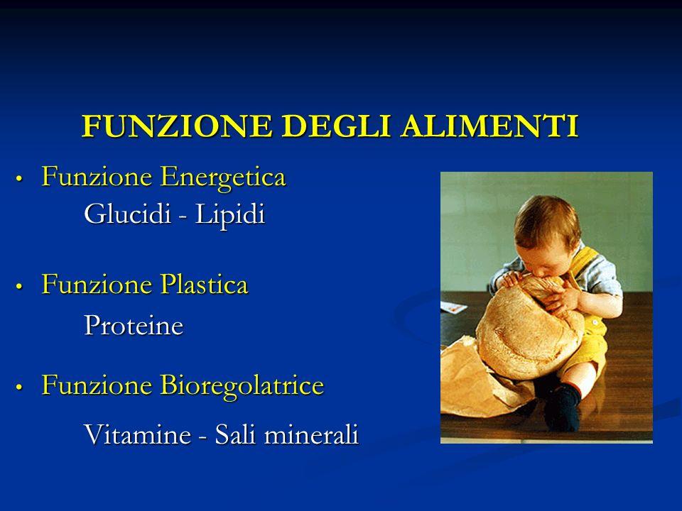 FUNZIONE DEGLI ALIMENTI Funzione Energetica Funzione Energetica Glucidi - Lipidi Funzione Plastica Funzione PlasticaProteine Funzione Bioregolatrice F