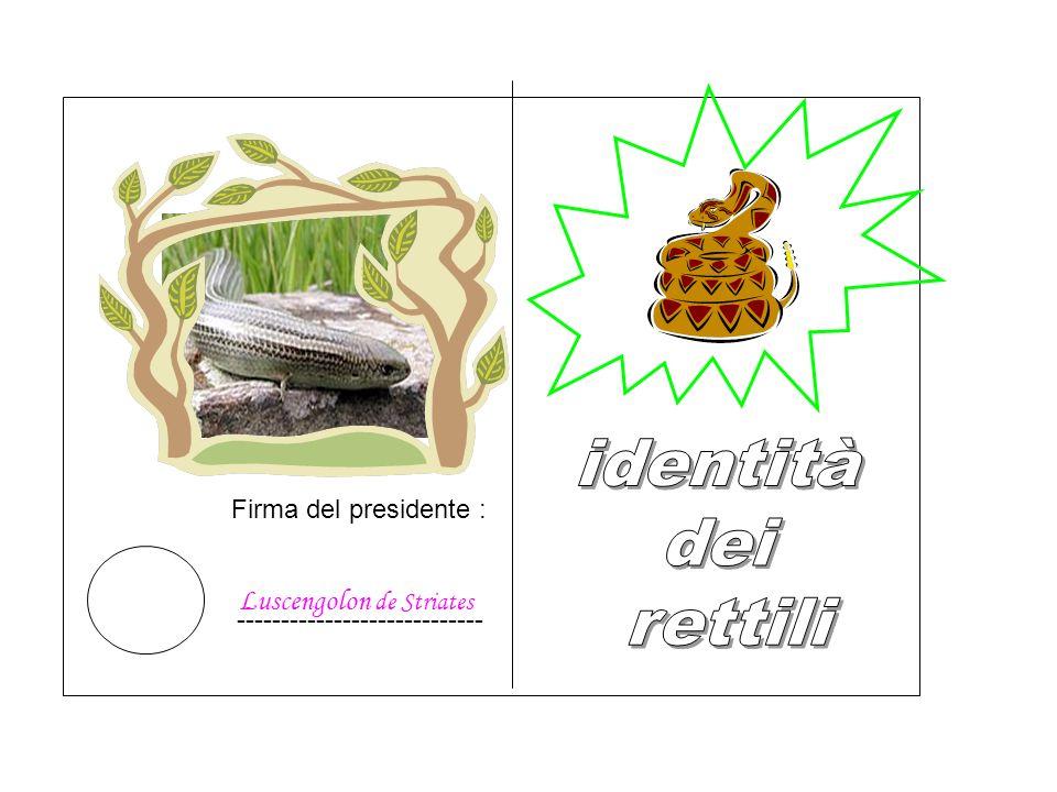 Firma del presidente : Luscengolon de Striates ----------------------------
