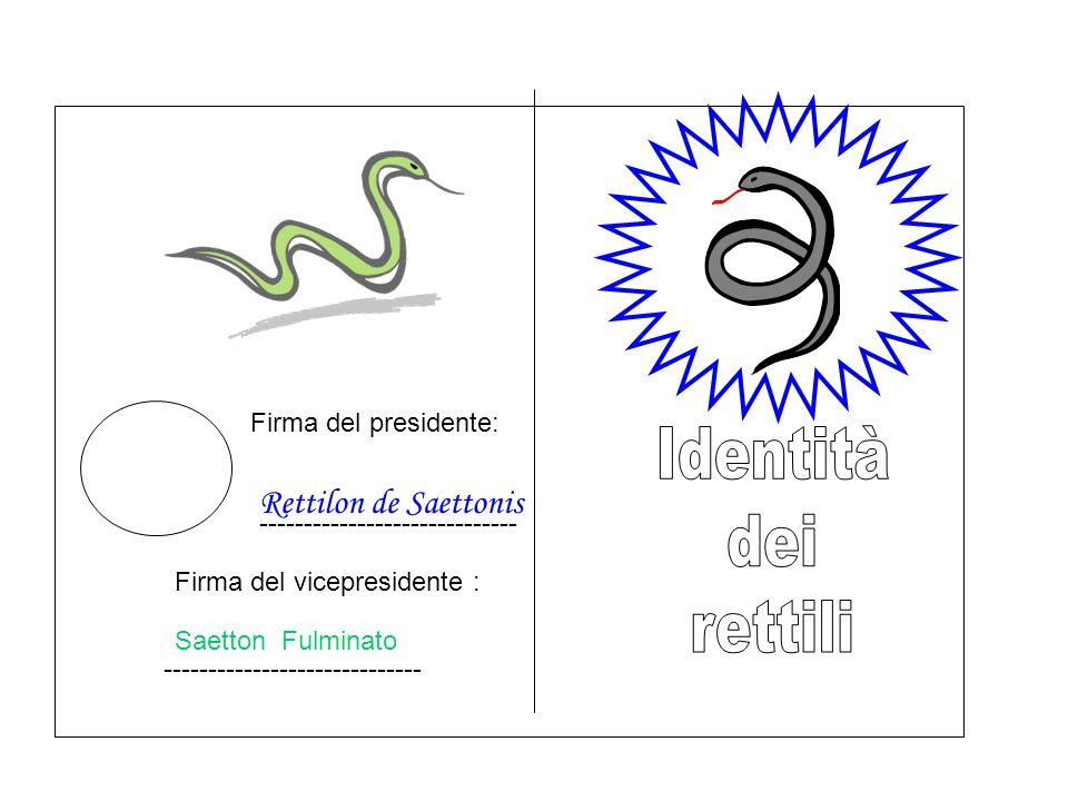 Firma del presidente: Rettilon de Saettonis ----------------------------- Firma del vicepresidente : Saetton Fulminato -----------------------------