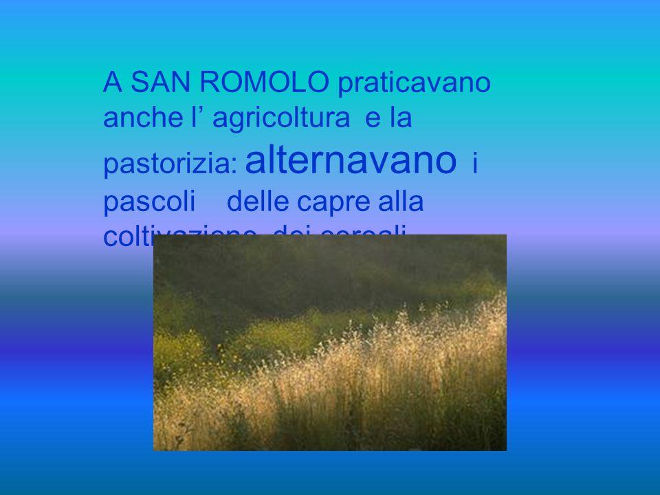 Nel 1500 ci fu un aumento della produzione per tutta la città di Sanremo