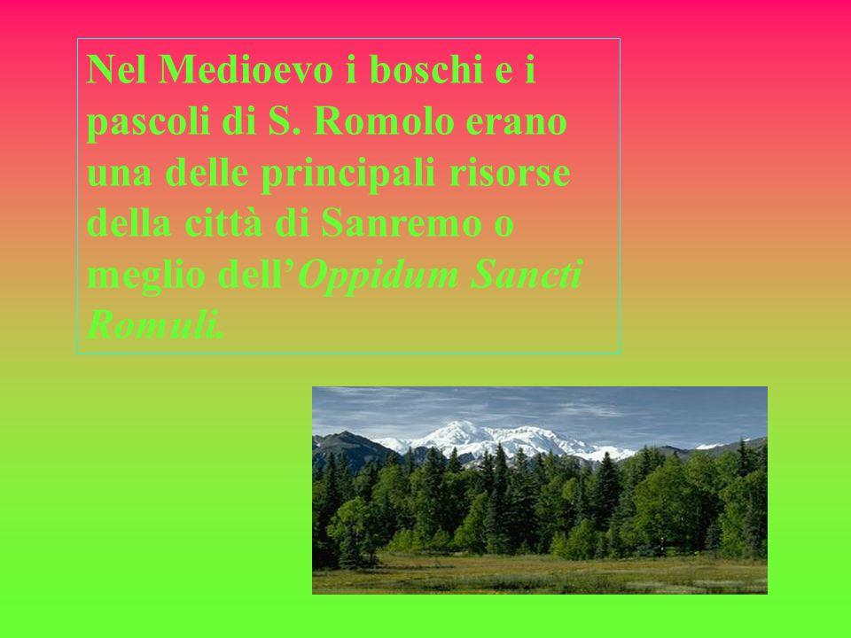 In queste zone facevano inoltre dei pellegrinaggi per visitare La Bauma cioè la grotta dove era vissuto il vescovo Romolo, diventato poi protettore della città.