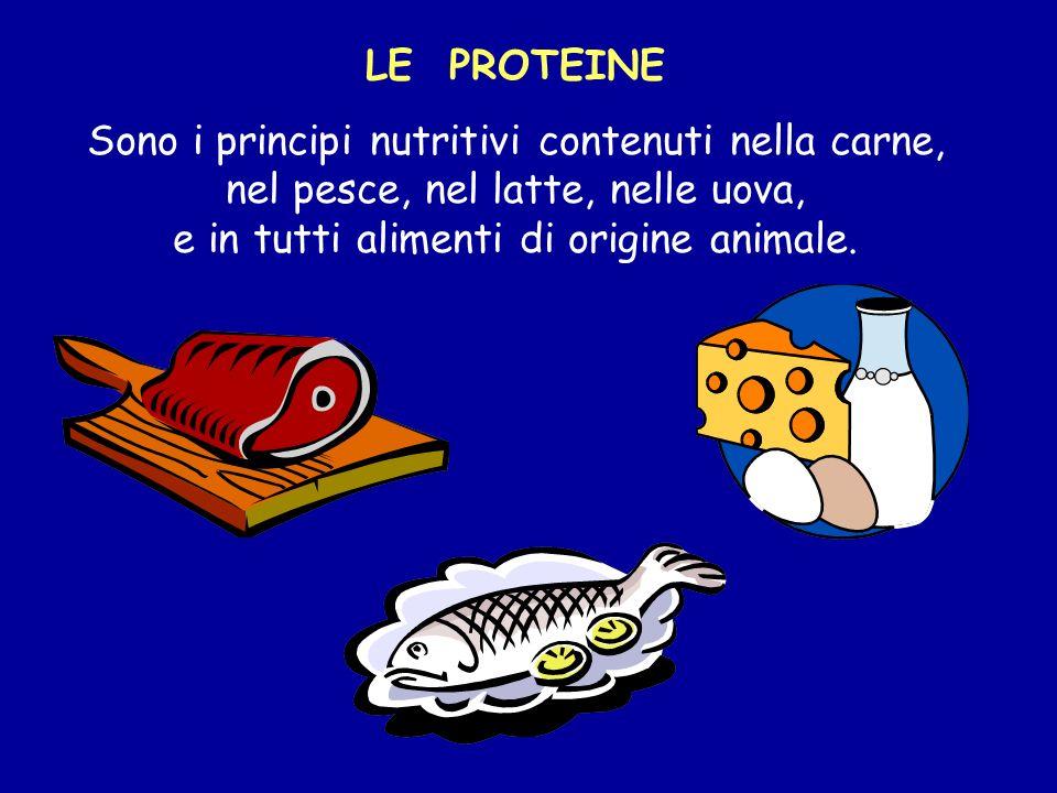 LE PROTEINE Sono i principi nutritivi contenuti nella carne, nel pesce, nel latte, nelle uova, e in tutti alimenti di origine animale.