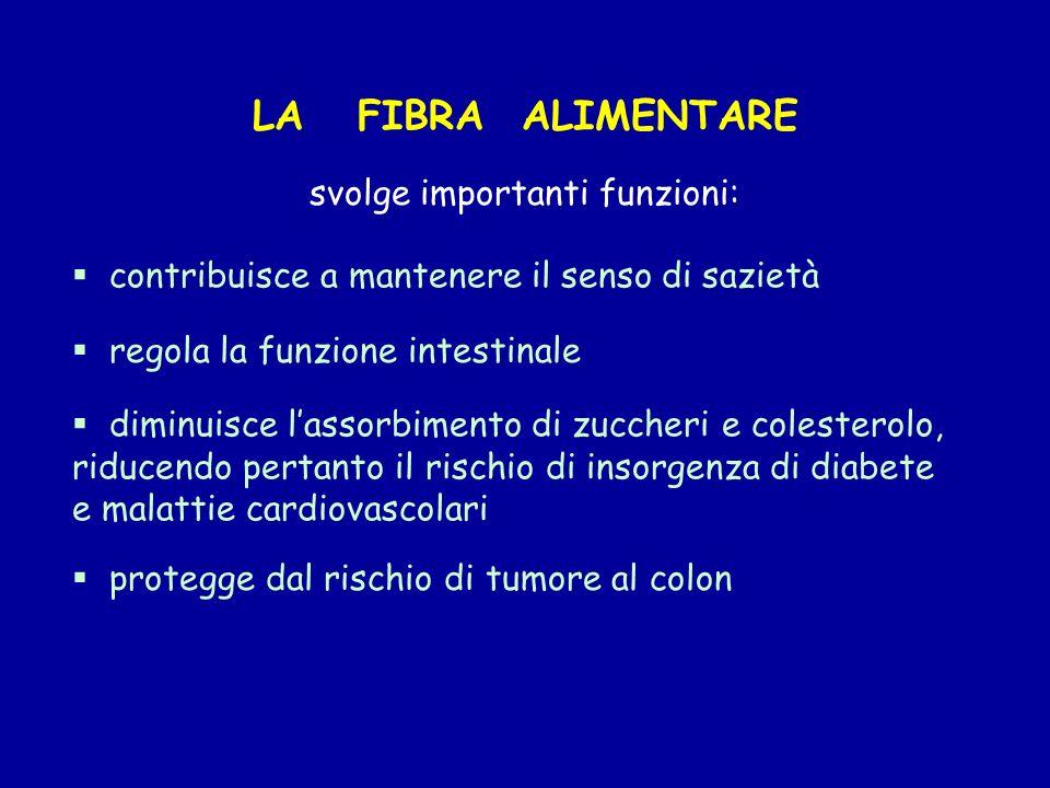 protegge dal rischio di tumore al colon LA FIBRA ALIMENTARE svolge importanti funzioni: contribuisce a mantenere il senso di sazietà regola la funzion