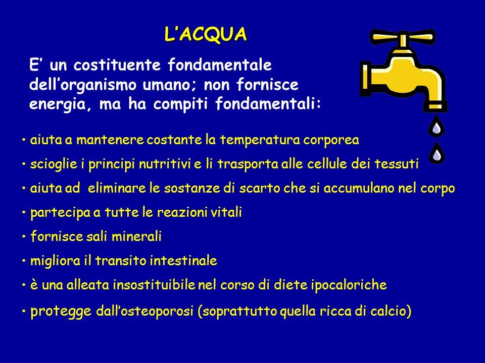 LACQUA E un costituente fondamentale dellorganismo umano; non fornisce energia, ma ha compiti fondamentali: aiuta a mantenere costante la temperatura
