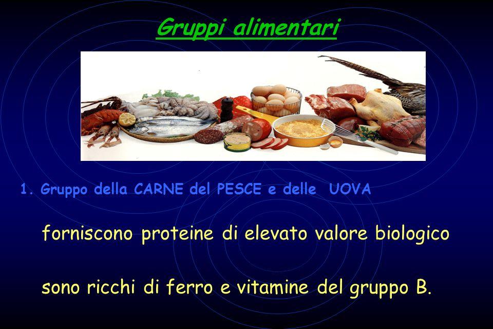 Gruppi alimentari 1. Gruppo della CARNE del PESCE e delle UOVA forniscono proteine di elevato valore biologico sono ricchi di ferro e vitamine del gru