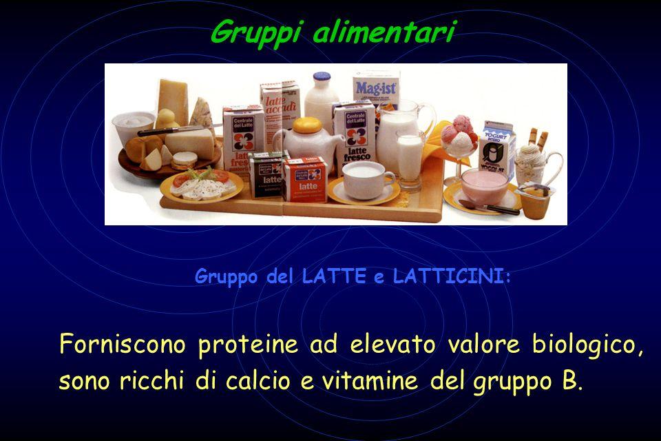 Gruppi alimentari 2 Gruppo del LATTE e LATTICINI: F Forniscono proteine ad elevato valore biologico, sono ricchi di calcio e vitamine del gruppo B.