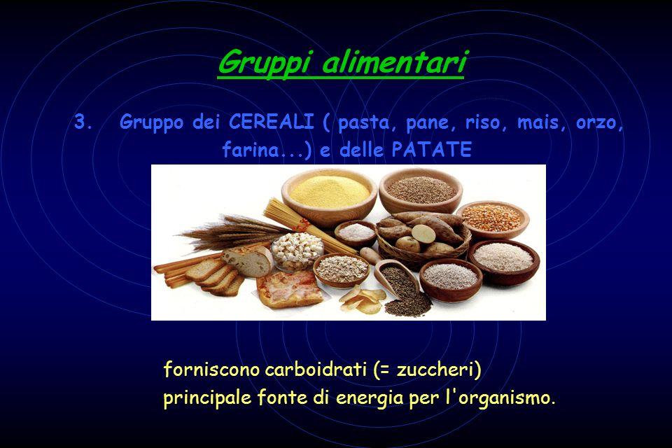 Gruppi alimentari 3. Gruppo dei CEREALI ( pasta, pane, riso, mais, orzo, farina...) e delle PATATE forniscono carboidrati (= zuccheri) principale font