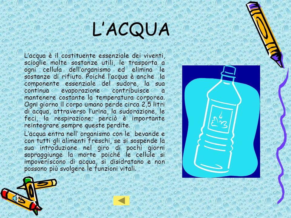 LACQUA Lacqua è il costituente essenziale dei viventi, scioglie molte sostanze utili, le trasporta a ogni cellula dellorganismo ed elimina le sostanze di rifiuto.