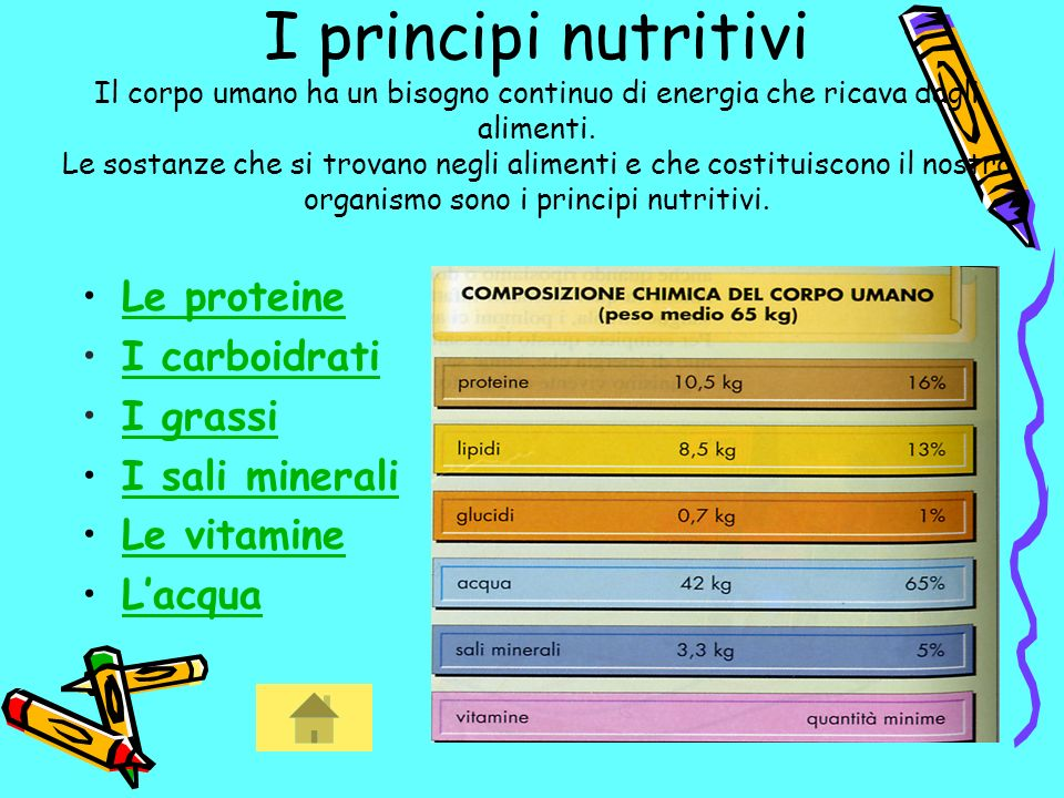 I principi nutritivi Il corpo umano ha un bisogno continuo di energia che ricava dagli alimenti.