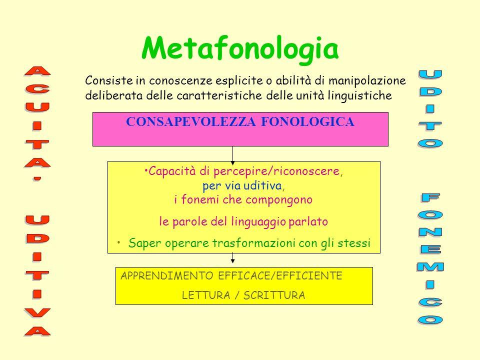 Metafonologia Consiste in conoscenze esplicite o abilità di manipolazione deliberata delle caratteristiche delle unità linguistiche Capacità di percep